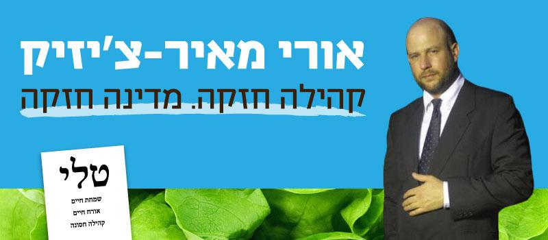 בחירות 2015 אורי מאיר צ'יזיק