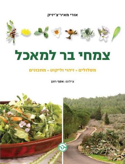 צמחי בר למאכל